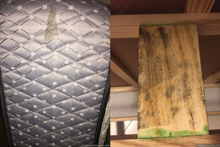 """#AshleyFurniture reviews. Molded furniture... """"Dont ever buy from this company!!!I purchased a bed frame with a mattress & a box spring from them ONLY 2 MONTHS AGO !And i went to change my bed sheets and noticed mold on the box spring cover! I ripped open my box spring to find BLACK MOLD all over the wood!..."""" http://ashley-furniture.pissedconsumer.com/review-about-ashley-furniture-bed-from-new-york-new-york-20150722669980.html #PissedConsumer #furniture #mattress #bed # boxspring  #bedframe"""
