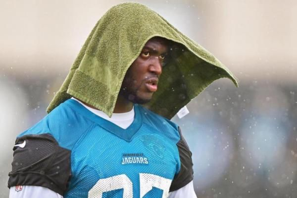 If you had doubts about rookie Leonard Fournette's workload for the Jacksonville Jaguars this season, fear not. Coach Doug Marrone revealed…