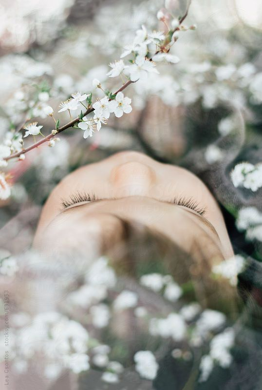 Double exposure portrait of a sleeping baby and blooming trees full of white flowers - Lea Csontos for Stocksy United