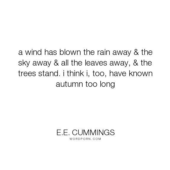 "E.E. Cummings - ""a wind has blown the rain away & the sky away & all the…"