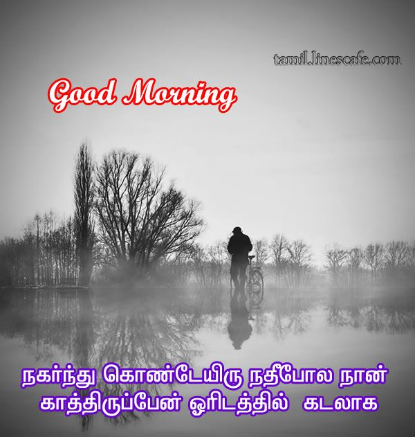 64 Best Images About Tamil Quotes On Pinterest: Good Morning Kavithai Greetings With Images