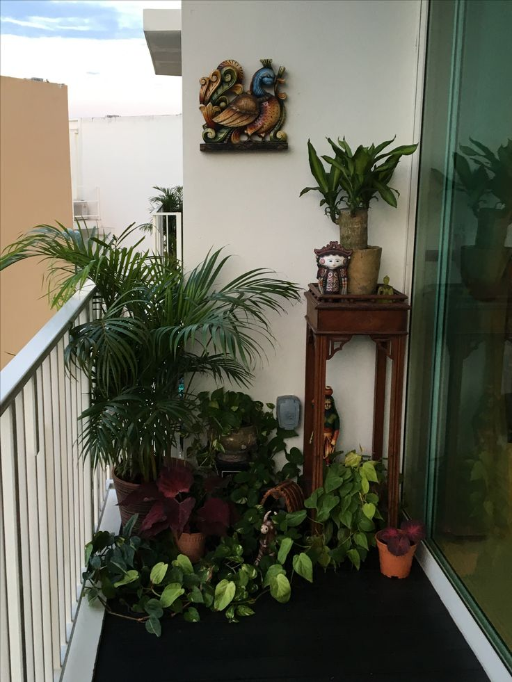 The 25 best Small balcony garden ideas on Pinterest  Balcony garden Balcony definition and