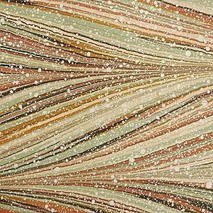 Thomas Leech marbled paper