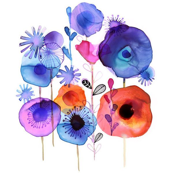 Margaret Berg Art : Illustration : florals / spring ❤ liked on Polyvore featuring home, home decor, wall art, flower illustration, floral home decor, spring wall art, floral wall art and spring home decor
