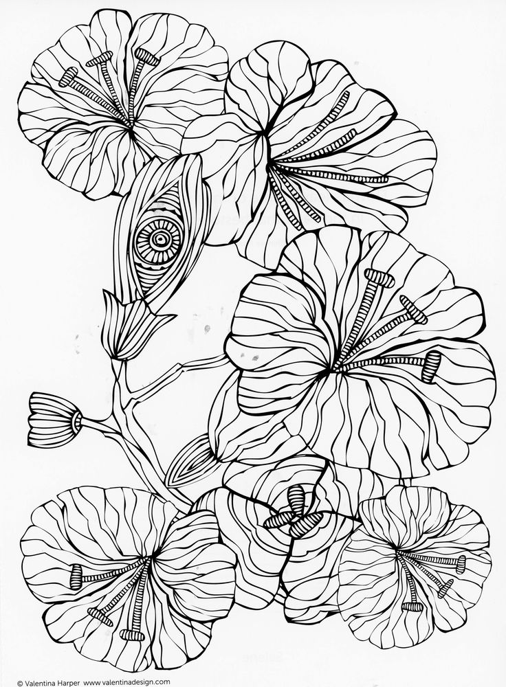 4266 best ) a images on Pinterest Coloring books, Coloring pages - copy coloring pictures of flowers and trees