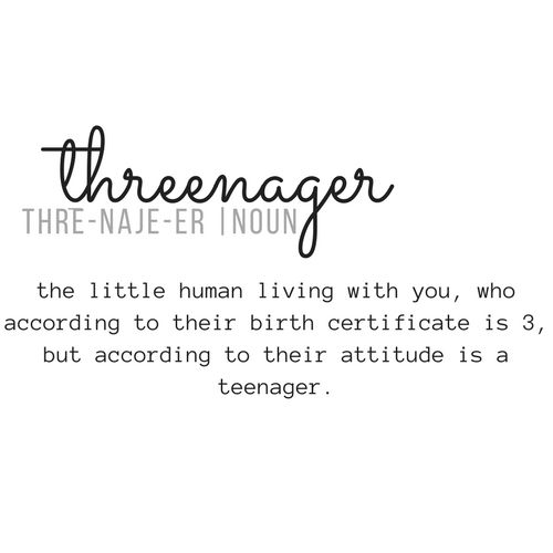 Threenager. A term I had never heard of until we were about half way through his 3rd year. It was a simple silly word that made me feel somewhat better about the way my son was behaving. It gave me a reminder that I was not alone – if someone else had coined the phrase threenager, ...