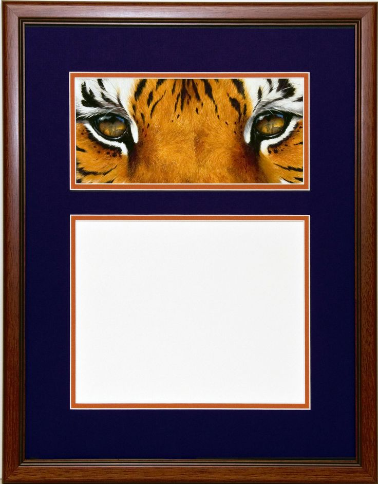 clemsonprints diploma frame with in the eyes of a tiger tillman view - Diploma Frames Walmart