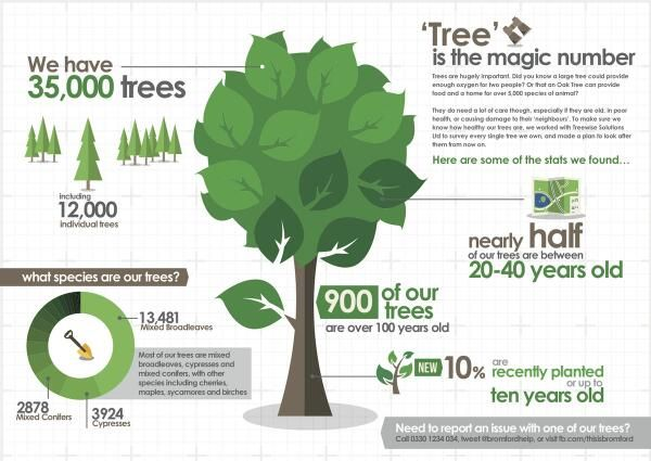 Trees are hugely important to us all and for that reason we're visited each one to ensure they have no diseases or problems. We them collated all this data and have now created a program of 'tree repairs'. In the long term, this means customers wont need to phone us about trees unless there's a health and safety risk. We're being proactive with our tree care :)  Of course, with all these fantastic stats, theres only one thing to do... infographic :)