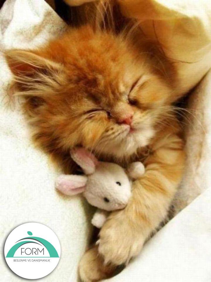 Pazar günleri kıvrılıp yatmak içindir!  #MutluPazarlar #dinlenme #pazar