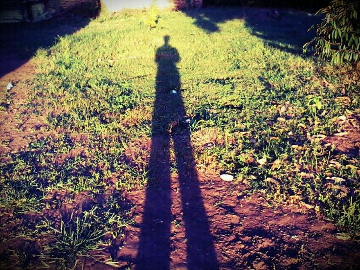 mr long leg