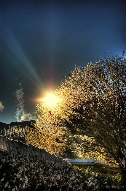 Winter :: HDR by PhilippNB, via Flickr