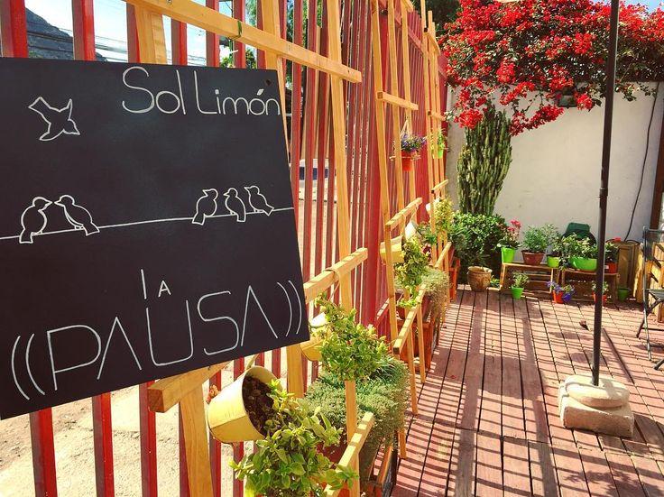 Y seguimos mejorando de a poco con más #verde la terraza para que sientan esa (( PAUSA )) que es #SolLimon en #Copiapo #Atacama.  Hoy #sábado también los esperamos en nuestra tienda, para que vitrineen con tranquilidad y lleven sus productos #saludables & #Gourmet que tanto gustan  Un #Smoothie?? Ideal para este día y para el organismo, en pleno #BarrioAlameda   #finefood #store #green #healthyfood #organic #natural #delicious #healthyliving #energy #weekend #happiness #instachile...