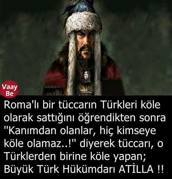 Türk ☾☆
