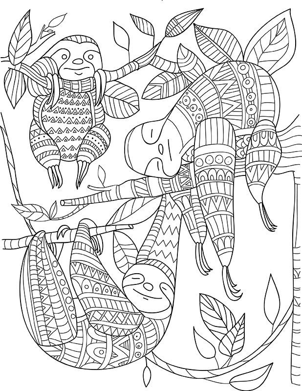 Sloth Zentangle Colouring Animals Zentangles Sloth Coloring And Puppy Coloring Pages Pattern Coloring Pages Animal Coloring Pages