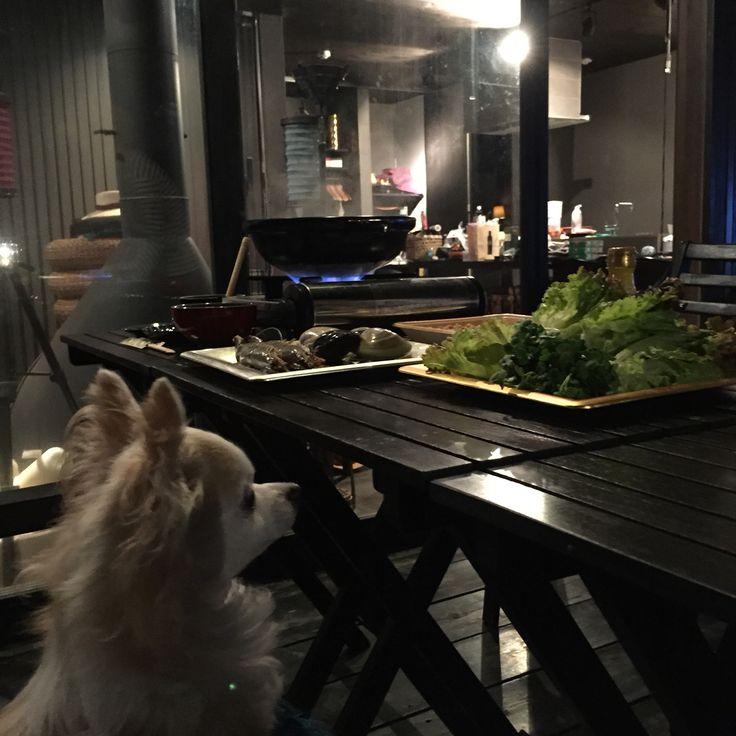 BBQ DINNER