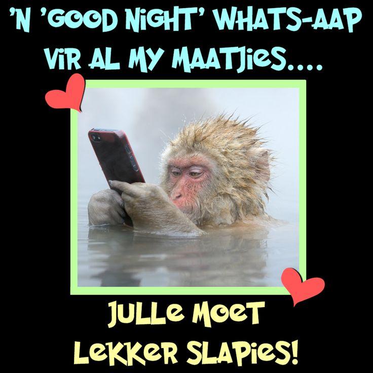 'N 'good night' whats-aap vir al my maatjies... Julle moet lekker slapies!