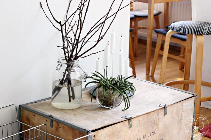 Oravanpesä | Vanerilaatikko on roskalavalöytö, korallikaktus ja Eno Multi Candle Pin