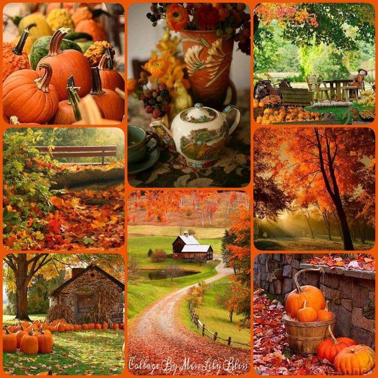 динамичные, коллаж на тему осень картинки наблюдается