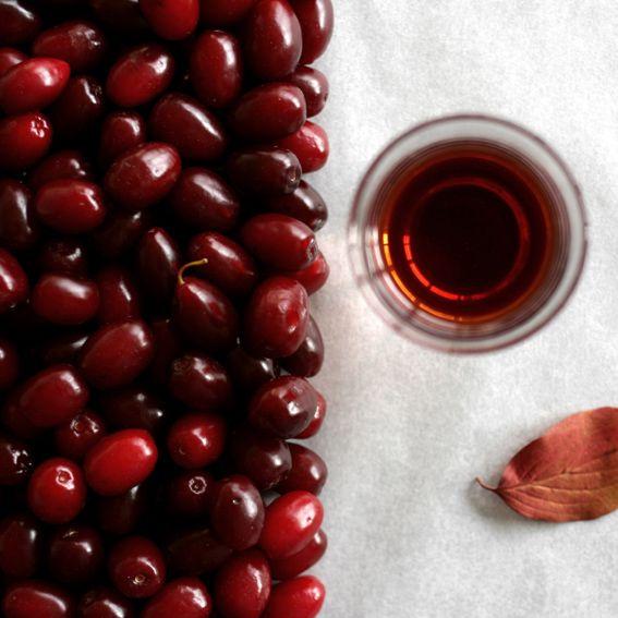 rozdzial   pierwszy: tajemnicze owoce. Deren w Czeskim Krasie w roku 2006  obrodzil  wyjatkowo obficie, zreszta rok i cztery lata pozn...