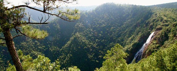 #BelizeNatureTours: http://www.chaacreek.com/belize-tours/belize-nature-tours