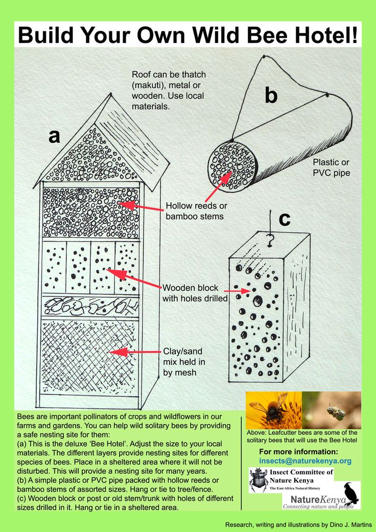42 Best Bee Hotels Images On Pinterest Bug Hotel Insect