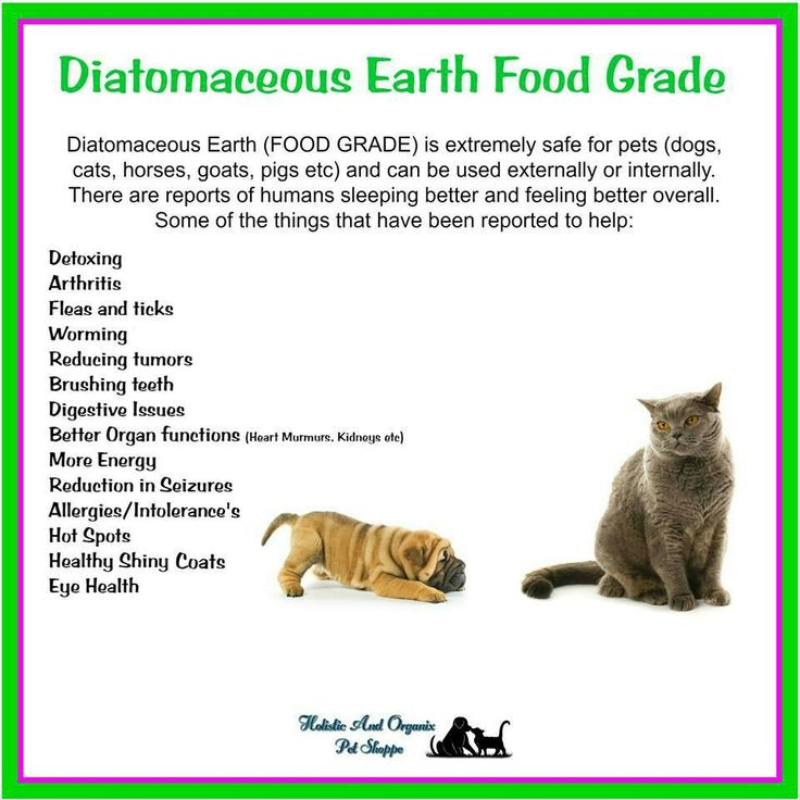 Pin By Gail Frascinella On Puppies Diatomaceous Earth Food Grade Diatomaceous Earth Pet Health