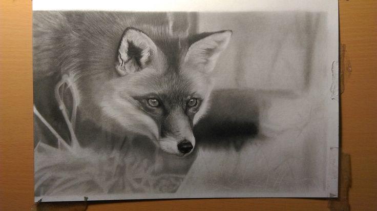 #fox #drawing #realistic #greylead #study #photorealistic
