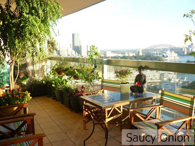 Find This Pin And More On Horticulture: Urban /indoor /balcony Gardening.