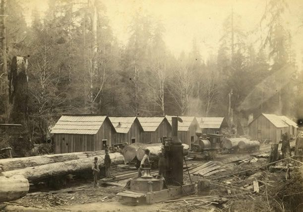 1000 Images About Logging Railroads On Pinterest Ghost