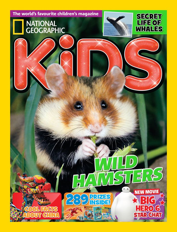 NG KiDS Issue 108