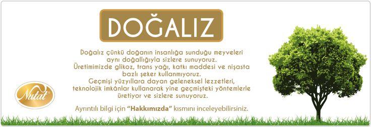 Nişasta bazlı şekerlerin dünyanın gelişmiş ülkelerinde yasaklanmasına ramen dünyanın en büyük pancar üreticilerinden olan Türkiye'de neden halen tüketildiği ve bilinçli sayılabilecek Sağlık Yöneticilerine ramen neden göz göre göre tüketilmesine müsade edildiği bilinmiyor.  Daha Fazla Bilgi İçin :  http://www.bilim-teknoloji.com/olumcul-zehir-glikoz-surubu/