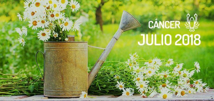Horóscopo de Cáncer para Julio 2018, gratis en WeMystic. Todas los meses, las previsiones astrológicas para tu signo del zodiaco.