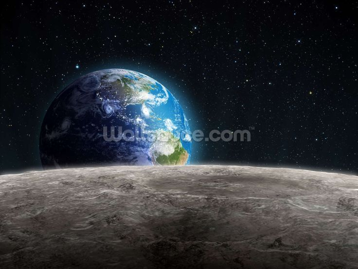 Rising Earth from the Moon wall mural