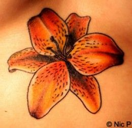Lily Flower Tattoo Designs