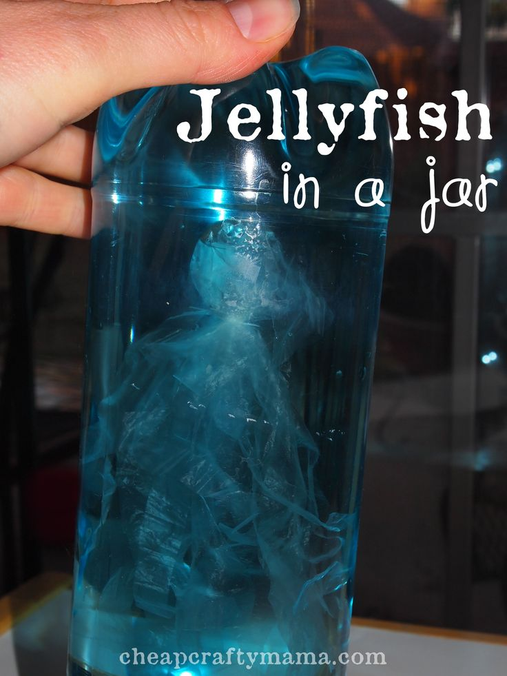 """""""J"""" is for Jellyfish- Jellyfish in Jars! (Put food color for different water color & differentiate between the three)"""