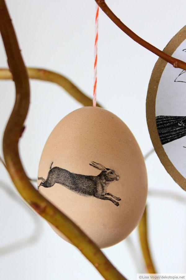 Photo Transfer Potch auf Eier