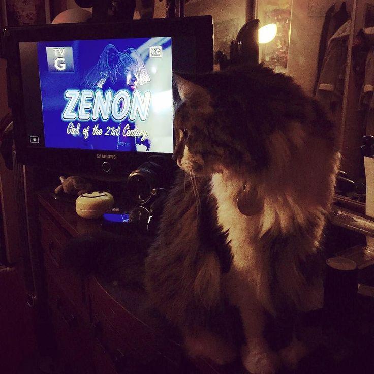 Watching my favorite New Years Eve movie with my snuggly boys. #Y2K #supernovagirl #zenon #zenongirlofthe21stcentury #zedislapedis