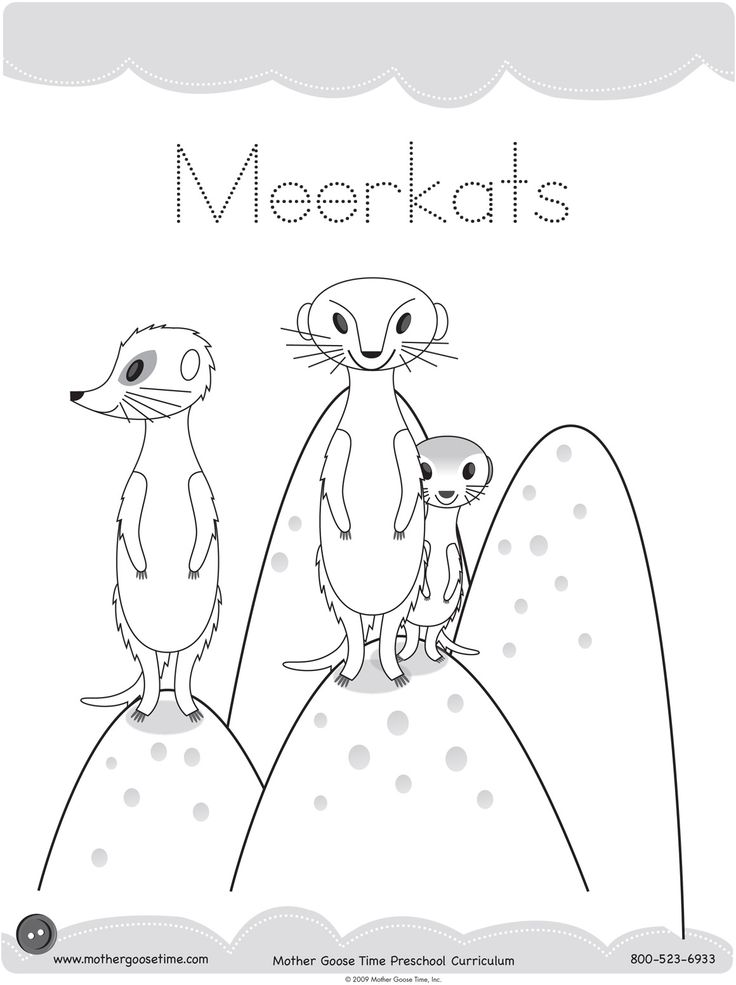 Meerkat Coloring Pages Printable For Fun Kids Colouring
