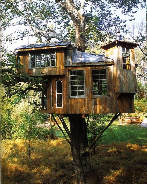 Treehouse Masters Treehouse Point: 49 Best Treehouse Masters