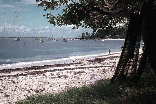 [Nelson Bay, NSW, Australia]