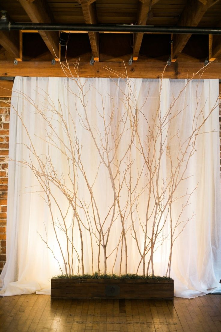 lights, drape, and branches for a winter backdrop