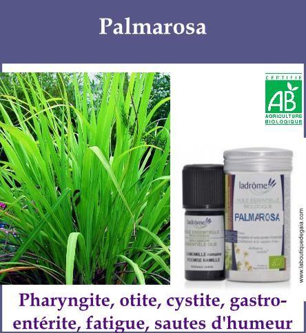 Palmarosa