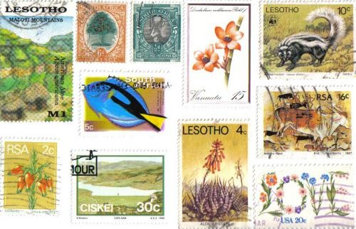 For the love of stamps and postcards . . .