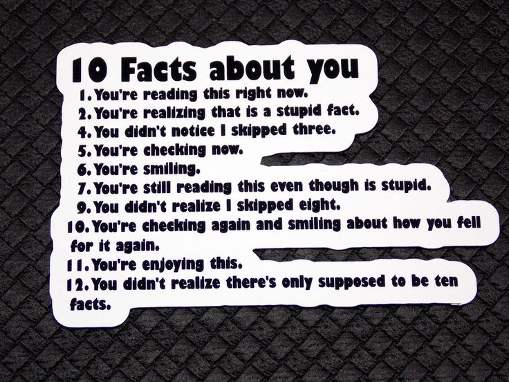 10 Facts About You Funny Flexible Fridge Refrigerator Magnet Unique Gift Osarix