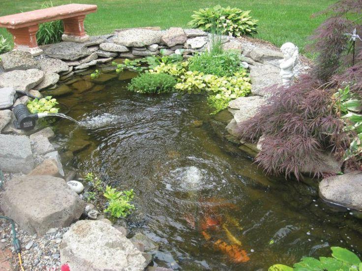Gartengestaltung mit Fischteich Koi