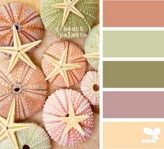 Palette di colori: pesca, melanzana,cipria scuro, beige scuro e chiaro.