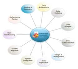 Database Support Service