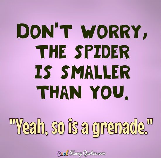 "Don't worry, the spider is smaller than you. ""Yeah. So is a grenade."" #coolfunnyquotes"