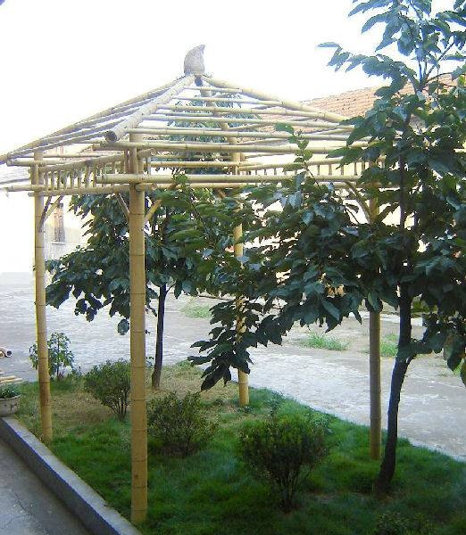 ... Screened Gazebo Design Plans. on bamboo gazebo design ideas