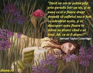 diane.ro: Florile din vise   Interpretarea şi semnificaţia v...
